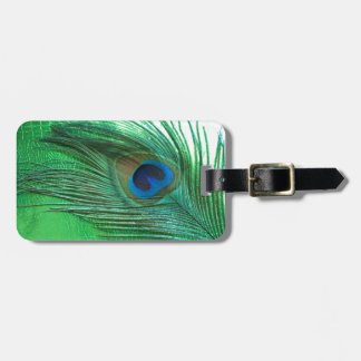 Green and White Peacock Feather Still Life Bag Tag