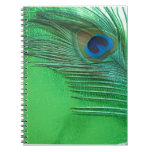 Green and White Peacock Feather Still Life Note Book