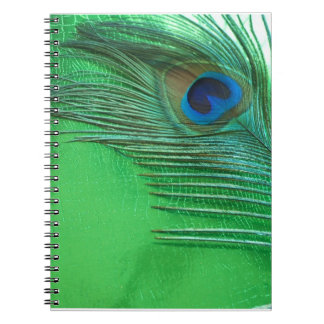 Green and White Peacock Feather Still Life Notebook