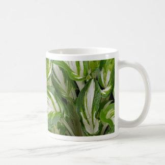 Green and white striped hosta leaves coffee mug