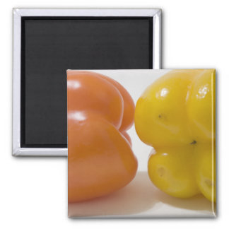 Green and Yellow Bell Peppers 2 Inch Square Magnet