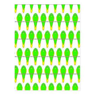Green and Yellow Bird Pattern. Parakeets. Postcard