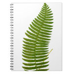 Green and Yellow Fern Leaf Botanical Illustration Spiral Note Book