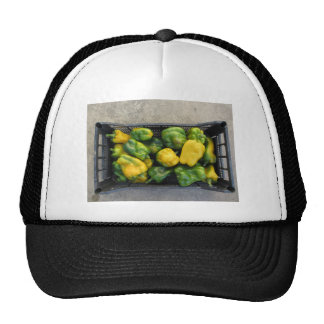 Green and yellow peppers in box trucker hat