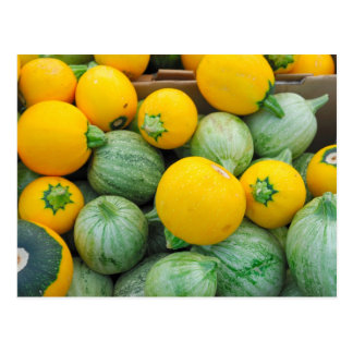 Green And Yellow Squash Postcard