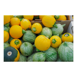 Green And Yellow Squash Poster