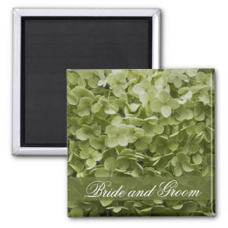 Green Annabelle Hydrangea Floral Wedding 2 Inch Square Magnet