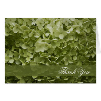 Green Annabelle Hydrangea Thank You Note Card
