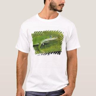 Green Anole, Anolis carolinensis, adult on palm T-Shirt