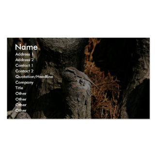 Green anole business card