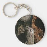 Green anole key chains