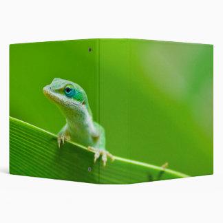 Green Anole Lizard Encounter Binders