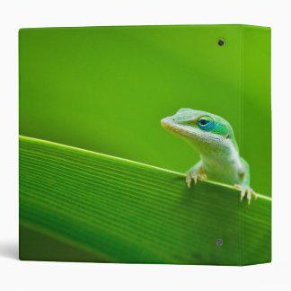 Green Anole Lizard Encounter Vinyl Binder