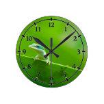 Green Anole Lizard Encounter Cute little thing Round Wallclock