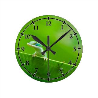 Green Anole Lizard Encounter Cute little thing Round Clock