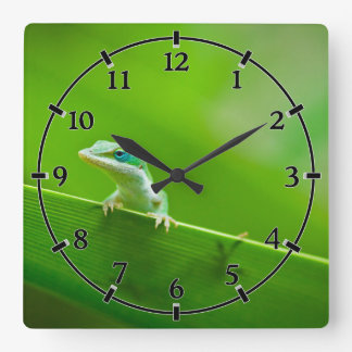Green Anole Lizard Encounter Cute little thing Square Wall Clock