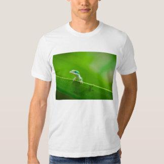 Green Anole Lizard Encounter Cute Tee Shirt