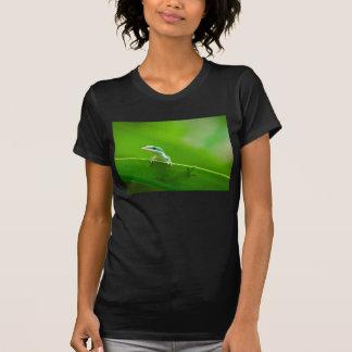 Green Anole Lizard Encounter Cute Shirts