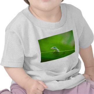 Green Anole Lizard Encounter Cute T-shirts