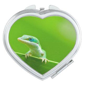 Green Anole Lizard Encounter So Cute! Compact Mirror