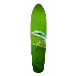 Green Anole Lizard Encounter So Cute! Custom Skate Board