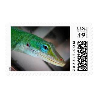 Green Anole Lizard Stamps