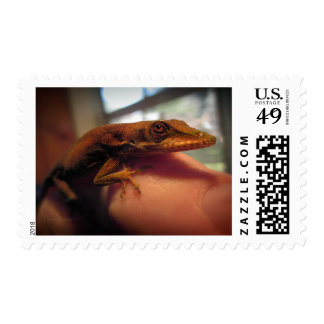 Green Anole Lizard Postage Stamps