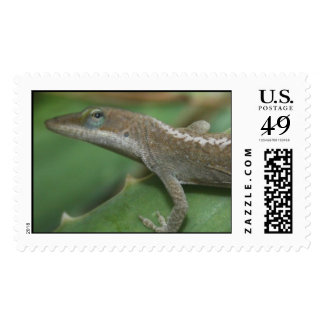 Green Anole - Lizard Stamps