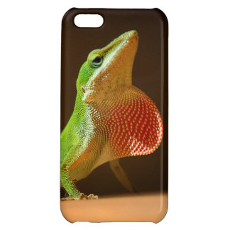 Green Anole Lizard with Red Thraot Cover For iPhone 5C