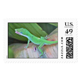 Green Anole on Cast Iron Leaf Postage