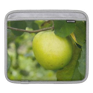 Green Apple on a Tree Branch iPad Sleeve
