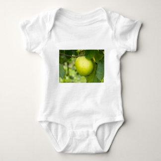 Green Apple on a Tree Branch Shirt