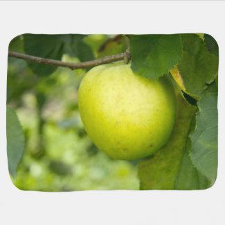Green Apple on a Tree Branch Stroller Blankets