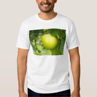 Green Apple on a Tree Branch T-shirt