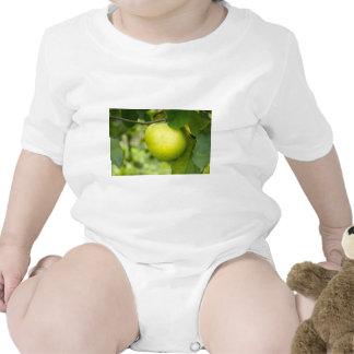 Green Apple on a Tree Branch Tshirts