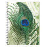 Green Apple Peacock Sill Life Note Books