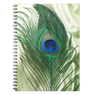 Green Apple Peacock Sill Life Notebook