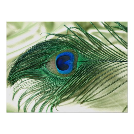 Green Apple Peacock Sill Life Poster