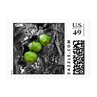 Green Apple Postage Stamps