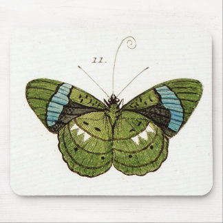 Green & Aqua Butterfly Illustration Mouse Pad