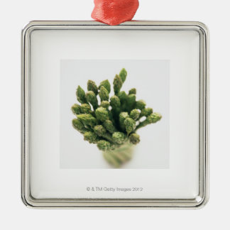 Green Asparagus Metal Ornament