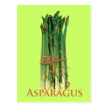 Green Asparagus Postcards