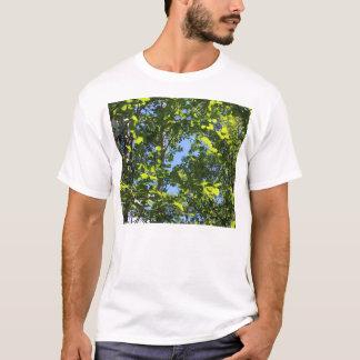Green Aspen Poplar Leaves in Summer T-Shirt