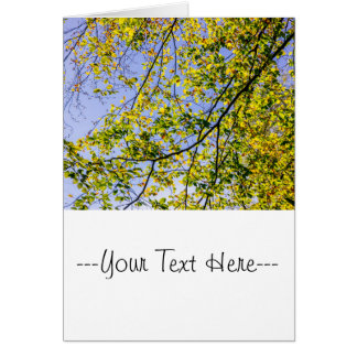 Green Autumn Leaves And A Blue Sky Card
