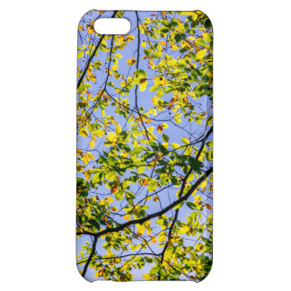 Green Autumn Leaves And A Blue Sky iPhone 5C Case