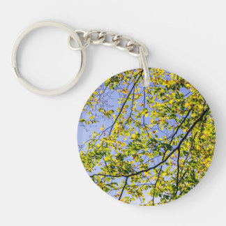 Green Autumn Leaves And A Blue Sky Keychain