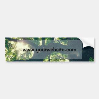 Green Backlit Tree, Sunlight Flora Car Bumper Sticker