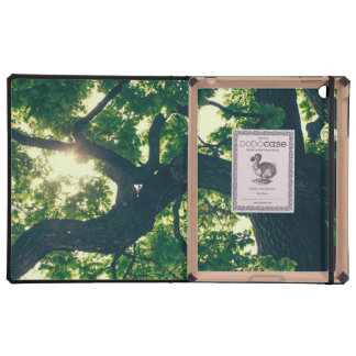 Green Backlit Tree, Sunlight Flora iPad Folio Cases