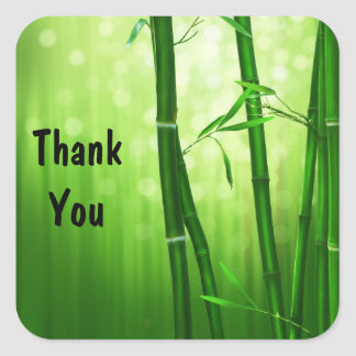 Green Bamboo and Bokeh Lights Thank You Square Sticker