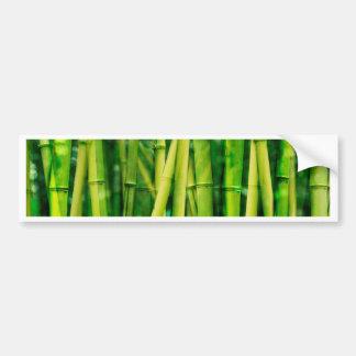 Green Bamboo Bumper Sticker